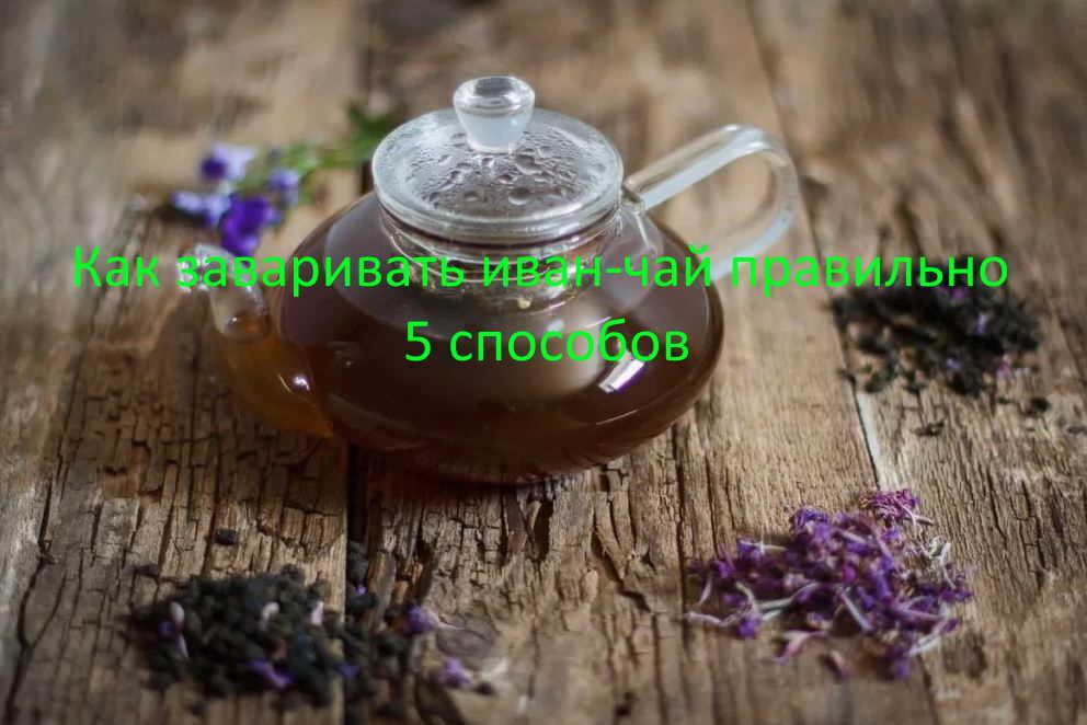 Как заваривать иван-чай правильно, 5 способов